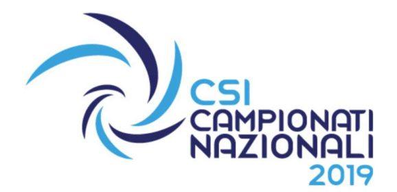 Logo CSI 2019